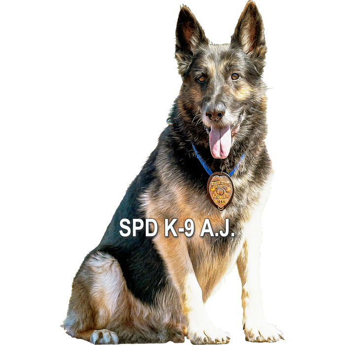 Friends of SPD K-9 A.J. who are available for adoption